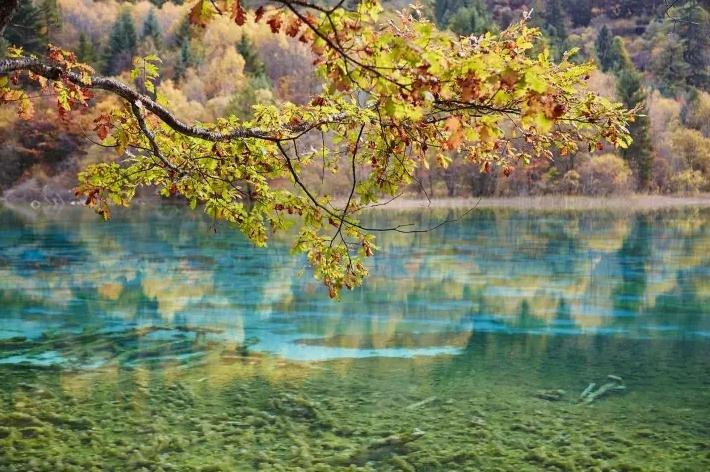 第一眼就惊艳的30处美景 中国入选地果然又是它