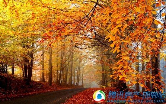 美的地产|金秋九月,快乐传颂,欢乐生活美一天