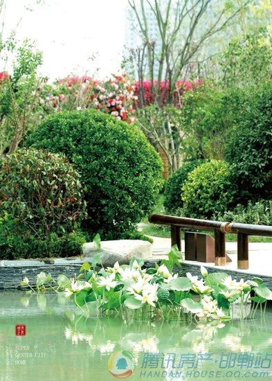 东部美的城|我虽不住在花园,花园却住在我家里