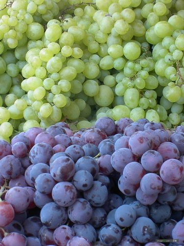 水果贩子教你怎么挑好水果   - 秋水伊人 - 秋水伊人的博客