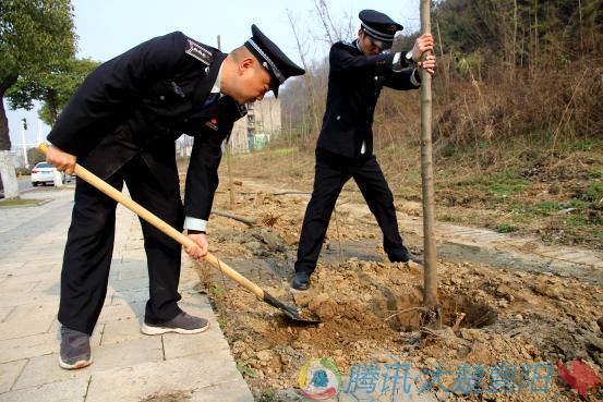 """襄阳城管自筹树苗 变""""垃圾废地""""为绿荫宝地"""