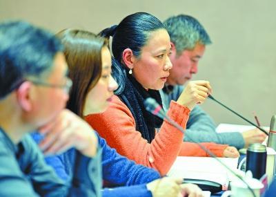 各行业党代表热议长江新城:撬动武汉发展的杠杆