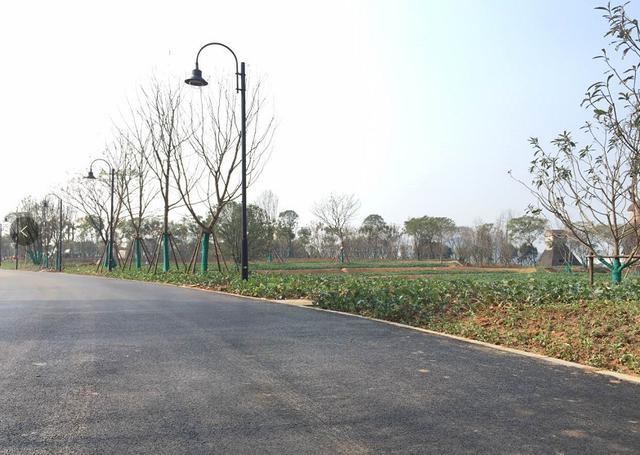 """武汉东湖绿道二期开放在即 工程进入""""美颜""""模式"""