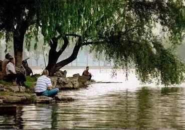 武汉钓鱼地图出炉 趁着春暖花开去玩玩 好舒服