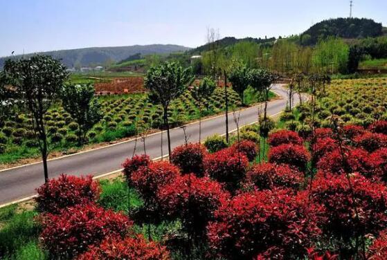湖北省京山县交通运输局交通扶贫成效显著