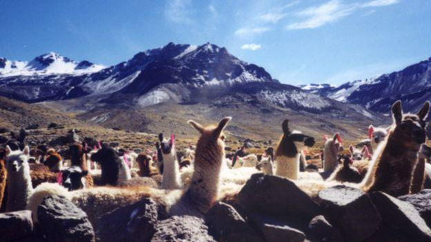 南美火山攀登:包含智慧的体力活