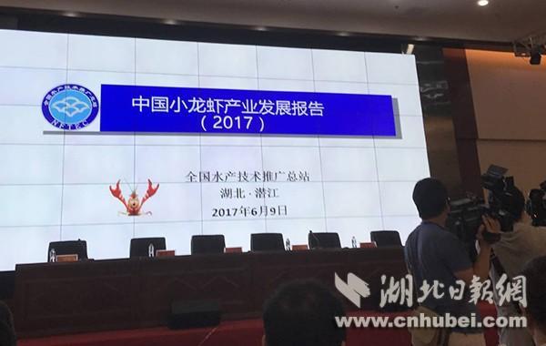 国际虾博会首发小龙虾产业报告:年产值近600亿