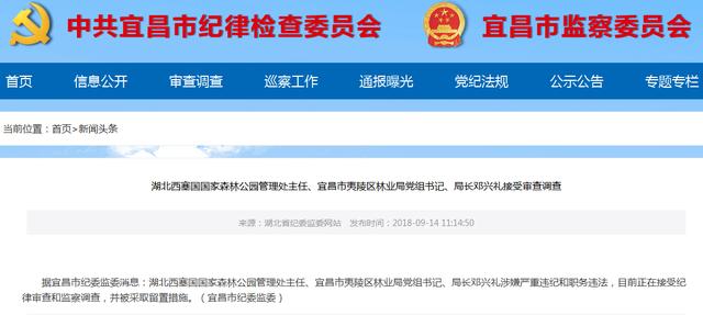 宜昌市夷陵区林业局局长邓兴礼正在接受调查