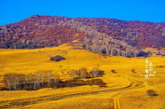 一条穿越最美草原的路线自带撩人秋景