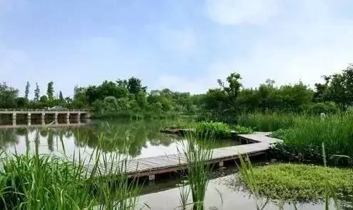 今日报料 财知道 旅游频道    舟山普陀山风景区    杭州淳安千岛湖