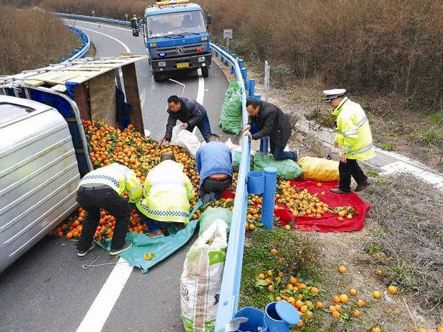 小货车谷竹高速路上侧翻 橘子散落一地(图)