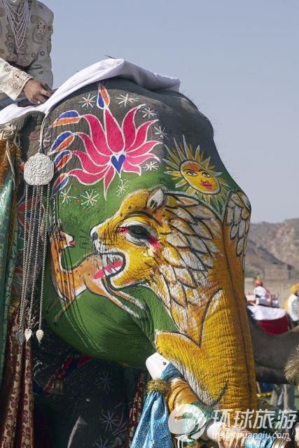 印度斋普尔的大象选美节