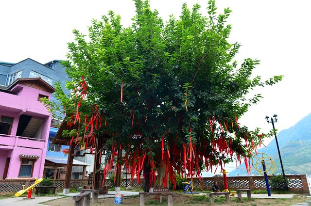 魅力乡村行(6) 初访昭君别院,邂逅色彩斑斓的童话小镇