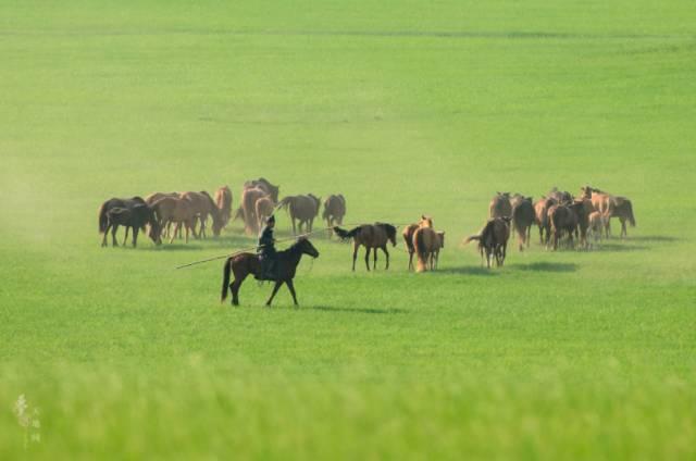 去牧草王国 跟着牧民玩鲜少人知的小众景点