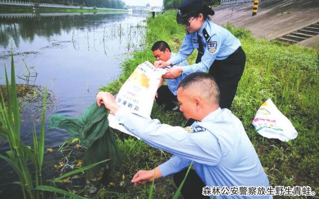 荆州森林公安突查水产品收购点 收缴1批野生动物