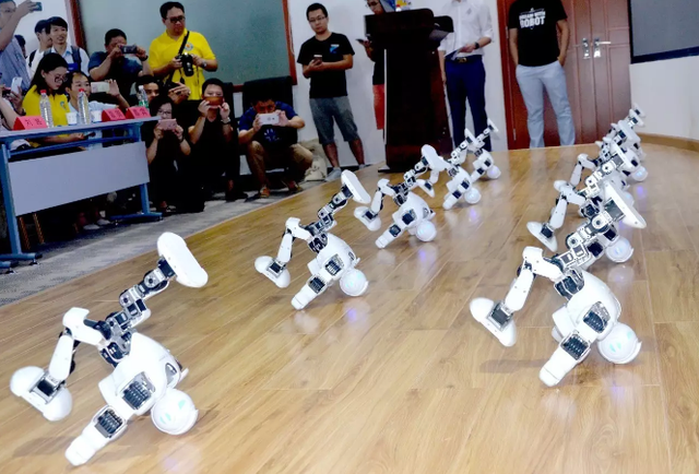 """光谷·青桐汇""""未来科技·机器人""""专场 大咖畅谈"""