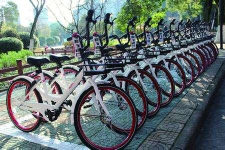 白色哈罗单车也来了,武汉共享单车集齐四色