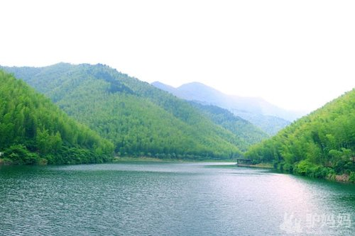 天目湖:南山竹海,枕水竹林过一夏图片