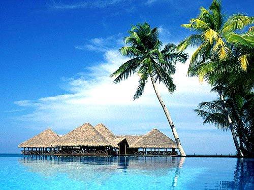 海南的风景图片大全【相关词_海南岛的图片大全】