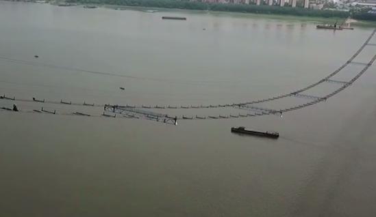 """杨泗港长江公路大桥猫道即将完工 """"吊桥""""现形"""