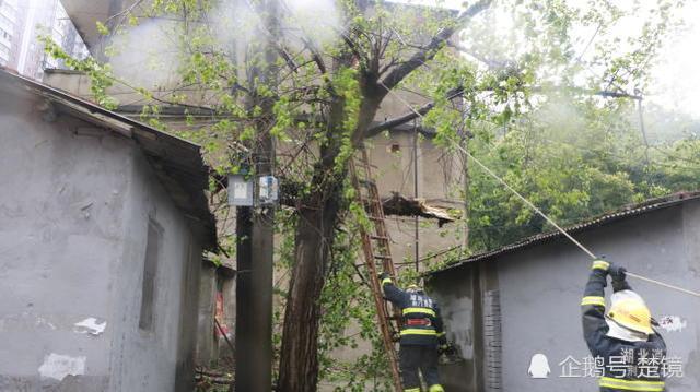 大风刮断树木压向村民屋顶 消防员冒雨排险