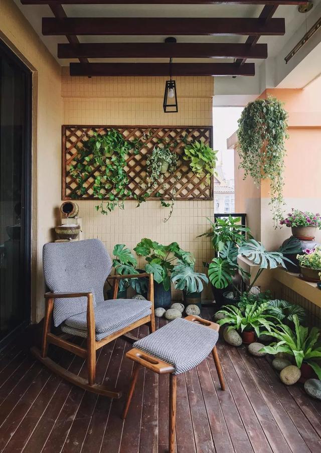 阳台植物上墙,不占空还漂亮!