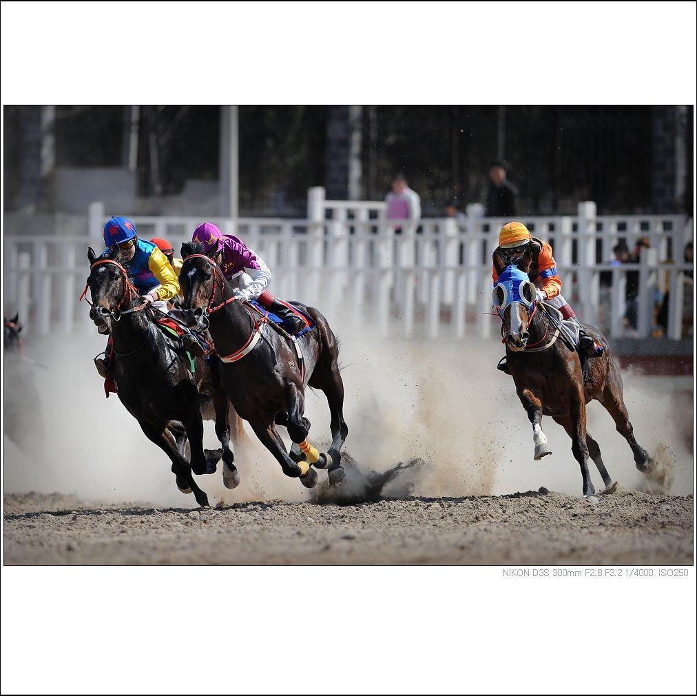 报名抢 第九届武汉国际赛马节套票