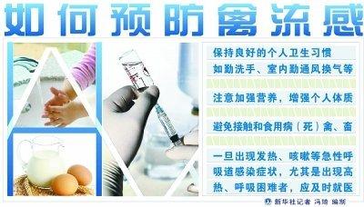 如何预防禽流感_图表:如何预防禽流感 新华社发
