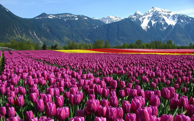 世界十大最美风景_世界最漂亮的风景图片