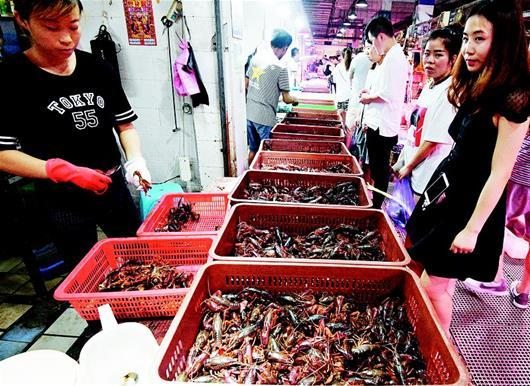 小龙虾进入盛产期 市场需求量陡增虾价环比涨三成