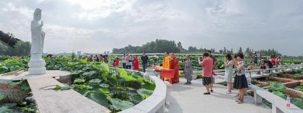 福利!本周六襄阳第二节荷花文化旅游节盛大开幕
