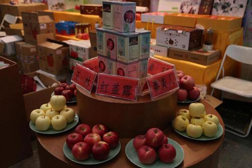 果香浓郁情更长 洛川苹果亮相武汉农博会