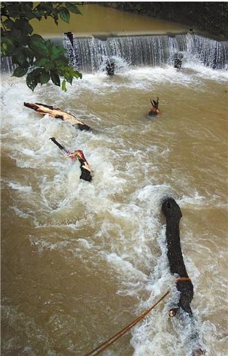 暴雨后涉水回家看奶奶 15岁少年跌入急流中溺亡 昨天上午,经过十几个