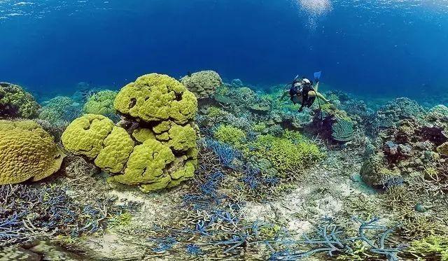 隐藏在南太平洋的免签海岛 趁着人少赶紧出发吧