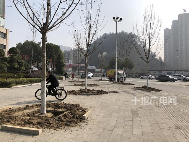 上海路口将新建三层立体交通 前期工作启动