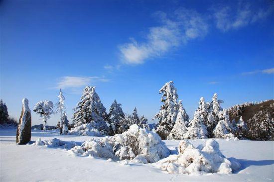 神农架大九湖景区首次向外地自驾游客开放