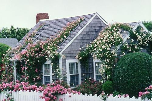 恩施城区 一座浪漫花屋即将完美呈现
