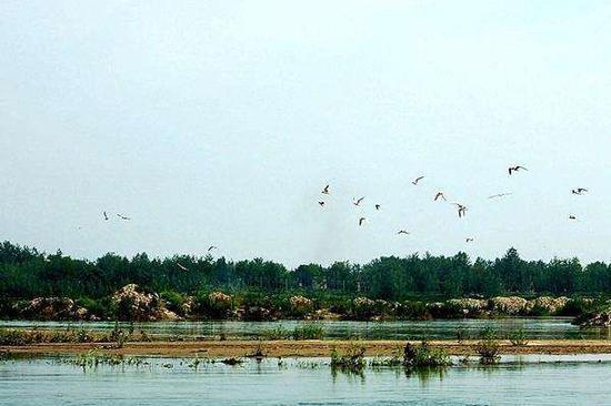 湖北一次性拿下十个国家湿地公园 哪个离你家最近
