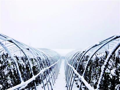 宜昌本周持续阴雨天 最低气温在3℃至4℃之间