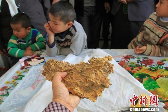 新疆牧民捡到15斤天然金块形似中国地图 - 曾都区卫生信息化 - 曾都区卫生信息化