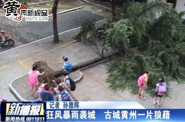 狂风暴雨天气突然袭城 古城黄州一片狼藉