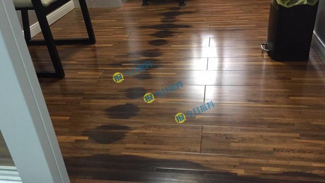 新地板铺装两月出现黑斑 厂家称地板受潮所致