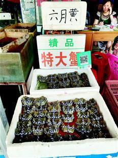 """一只没2两要卖20元 高价""""六月黄""""螃蟹值得吃吗"""