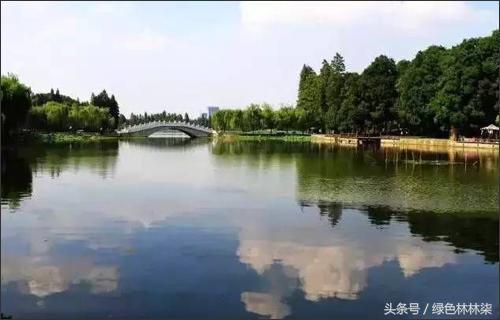 武汉夏天最美的七大湖你去过几个?