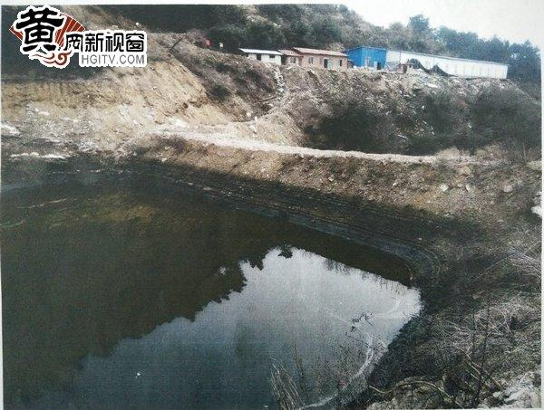 养殖场所下方的渗塘.jpg