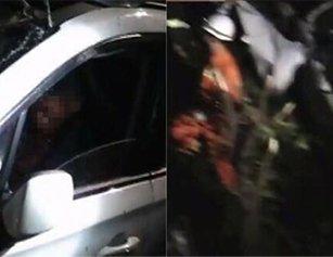 男子驾车撞上大树 车头损毁严重