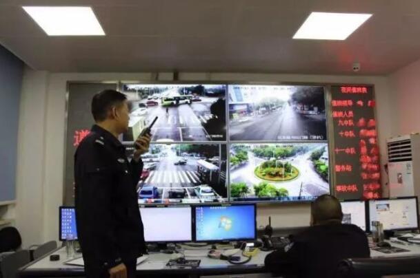 荆州女司机伪造假证 被罚款5200元扣12分