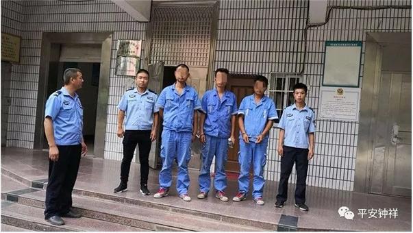 荆门三男子盗走通信电缆150余米 再次作案落入警网