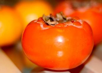 夏天不要多吃的七种水果