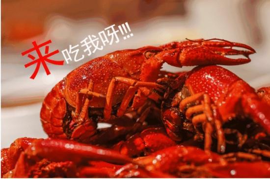 如何健康吃小龙虾?小龙虾和健康都不可辜负